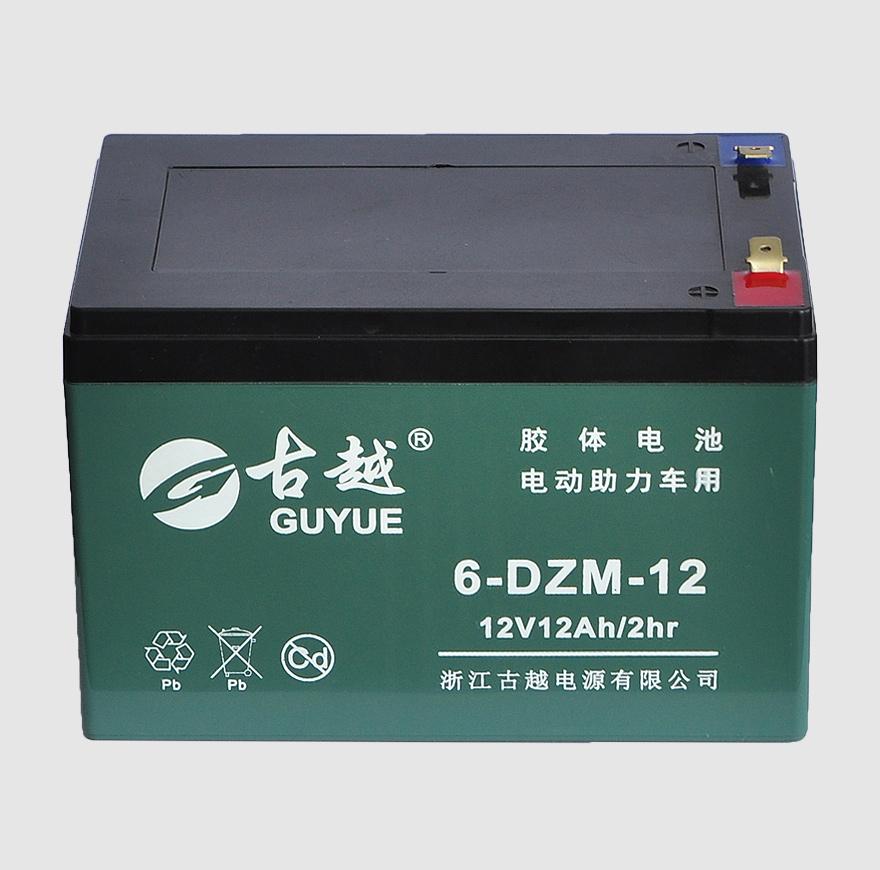 电动车电池 6-DZM-12