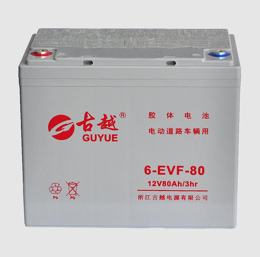 电动车电池 6-EVF-80