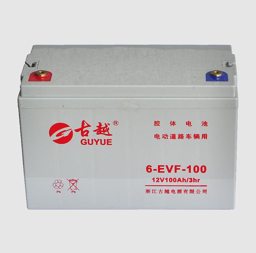 电动车电池 6-EVF-100