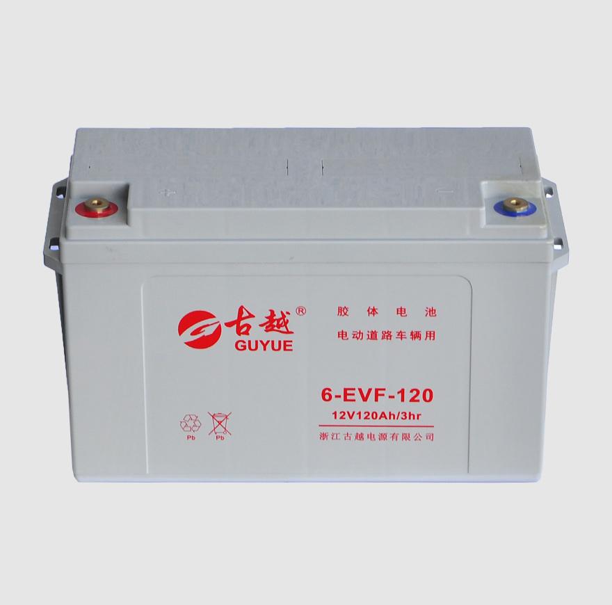电动车电池 6-EVF-120